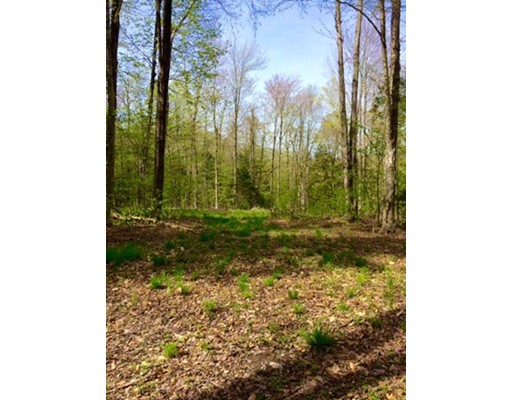 Land for Sale at 51 Stone Hill Road 51 Stone Hill Road Rowe, Massachusetts 01367 United States