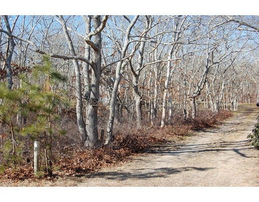 Additional photo for property listing at 25 Meshacket Road  Edgartown, Massachusetts 02539 United States