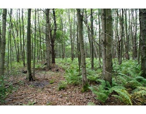 Land for Sale at 8 Wauwinet Road 8 Wauwinet Road Barre, Massachusetts 01005 United States