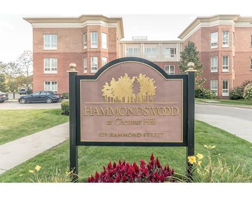 共管式独立产权公寓 为 出租 在 629 Hammond St #206W 629 Hammond St #206W 布鲁克莱恩, 马萨诸塞州 02467 美国