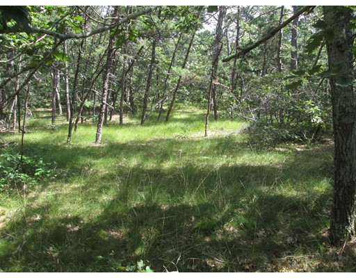 Land for Sale at 70 Rowell Road 70 Rowell Road Wellfleet, Massachusetts 02667 United States