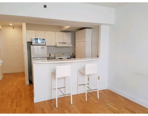 共管式独立产权公寓 为 出租 在 15 River Street #405 15 River Street #405 波士顿, 马萨诸塞州 02108 美国