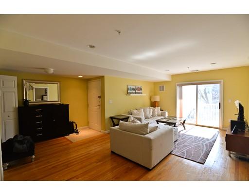 独户住宅 为 出租 在 20 Cameron Street 布鲁克莱恩, 马萨诸塞州 02445 美国