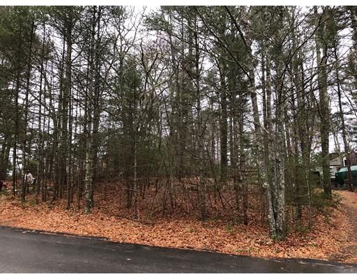 土地,用地 为 销售 在 Nel Bonney Road Nel Bonney Road Carver, 马萨诸塞州 02330 美国