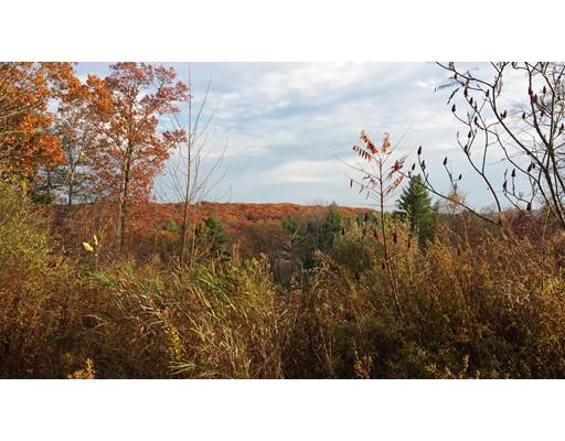 Terrain pour l Vente à 4 AUTUMN HARVEST Court 4 AUTUMN HARVEST Court Grafton, Massachusetts 01519 États-Unis
