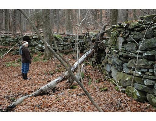 土地,用地 为 销售 在 Address Not Available Plainfield, 马萨诸塞州 01070 美国