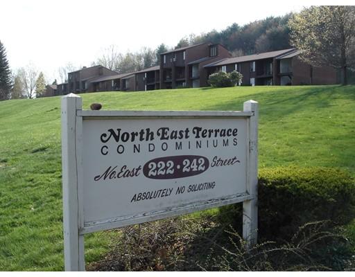 共管式独立产权公寓 为 销售 在 232 N East Street 232 N East Street Amherst, 马萨诸塞州 01002 美国