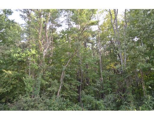 Additional photo for property listing at Main Road  Westhampton, Massachusetts 01027 United States