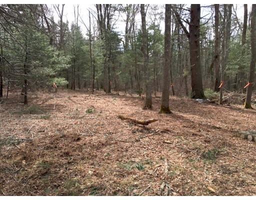 Land for Sale at 130 County Road Plympton, Massachusetts 02367 United States