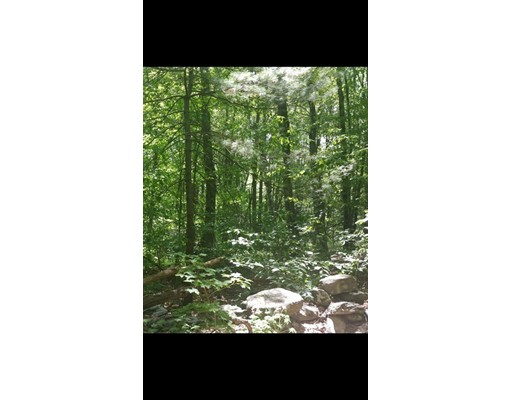 Land for Sale at Address Not Available Chesterfield, Massachusetts 01012 United States