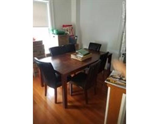 独户住宅 为 出租 在 14 Cypress Street 布鲁克莱恩, 马萨诸塞州 02445 美国