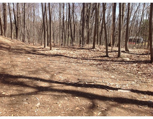 999 Buildable Lot, Bolton, MA, 01740