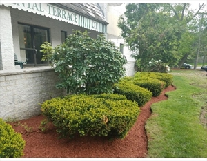 295 W Wyoming Ave 7B is a similar property to 61 Wright  Stoneham Ma