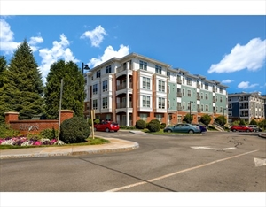 3 Repton Circle 3101 is a similar property to 50 Watertown St  Watertown Ma