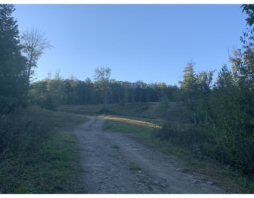 Gorham Pond Rd, Goffstown, New Hampshire, NH 03045, ,Land,For Sale,4938264