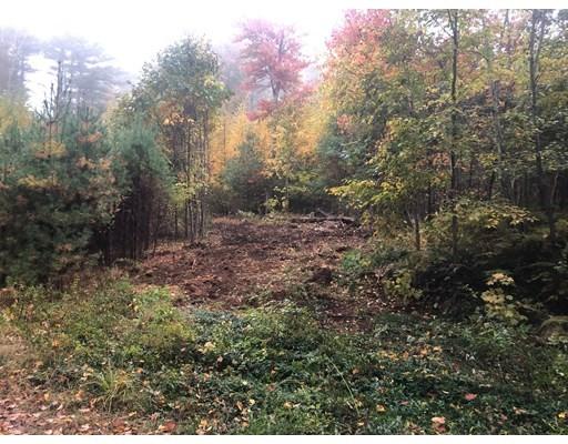 72 Woodward RD, Petersham, Massachusetts, MA 01366, ,Land,For Sale,4950153