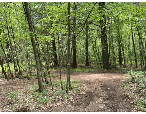 33 Campground Rd, Sterling, Massachusetts, MA 01564, ,Land,For Sale,4951166