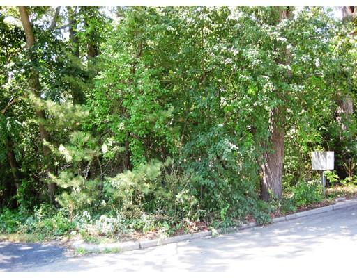 Photo of 46 Hillcrest Road Waltham MA 02451
