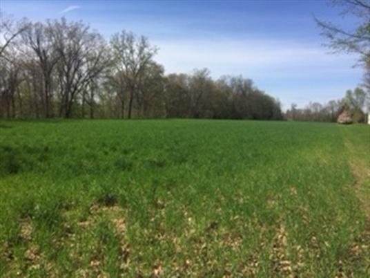 0 Pine Meadow Rd, Northfield, MA: $140,000