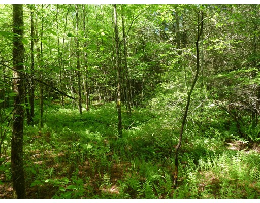 Lot B (2) Sears Road, Goshen, MA