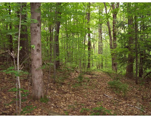 Lot 4 Briggs Road, Petersham, MA