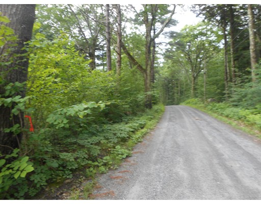 Lot 6 Blair Road, Blandford, MA