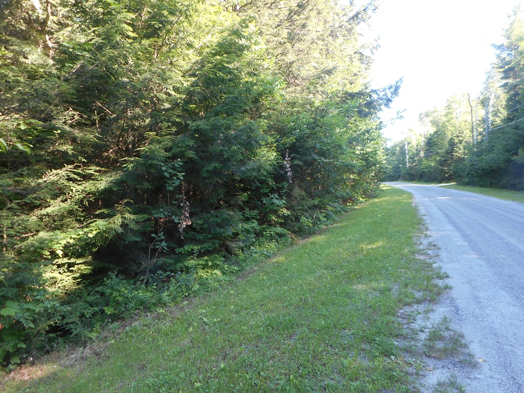Photo of Lot 40.5 Stoney Brook Rd Becket MA 01223