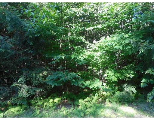 Lot 40.6 Stoney Brook Road, Becket, MA