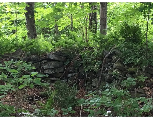 Lot 1 Ranney Corner Road, Ashfield, MA