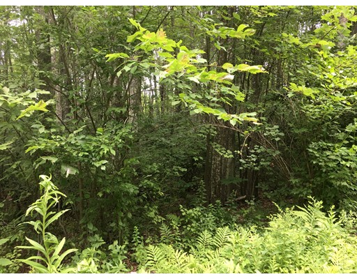 Lot 3 Ranney Corner Road, Ashfield, MA
