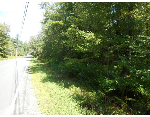 Lot 49 Otis Tolland Road, Blandford, MA