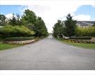 501 MEADOW LANE #501, RANDOLPH, MA 02368  Photo 16