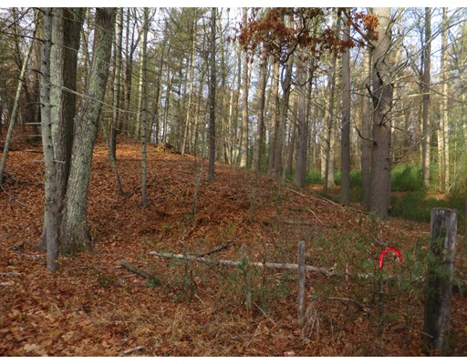 Lot 8 Bumstead Road, Monson, MA
