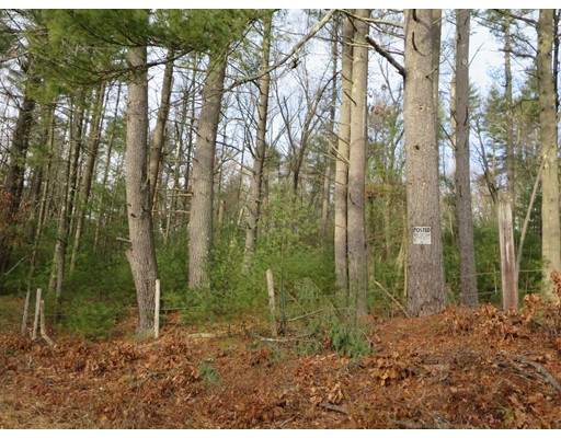 Lot 10 Bumstead Road, Monson, MA