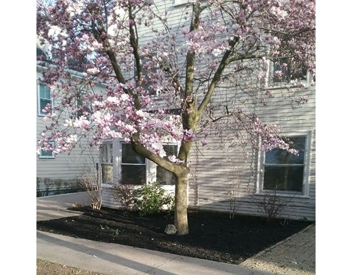 44 York Terrace, Brookline, Ma 02446