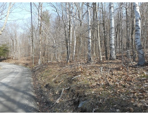 Lot 3-2 George Carter Road, Becket, MA
