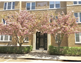 Property for sale at 229 Freeman Street - Unit: 1, Brookline,  Massachusetts 02446