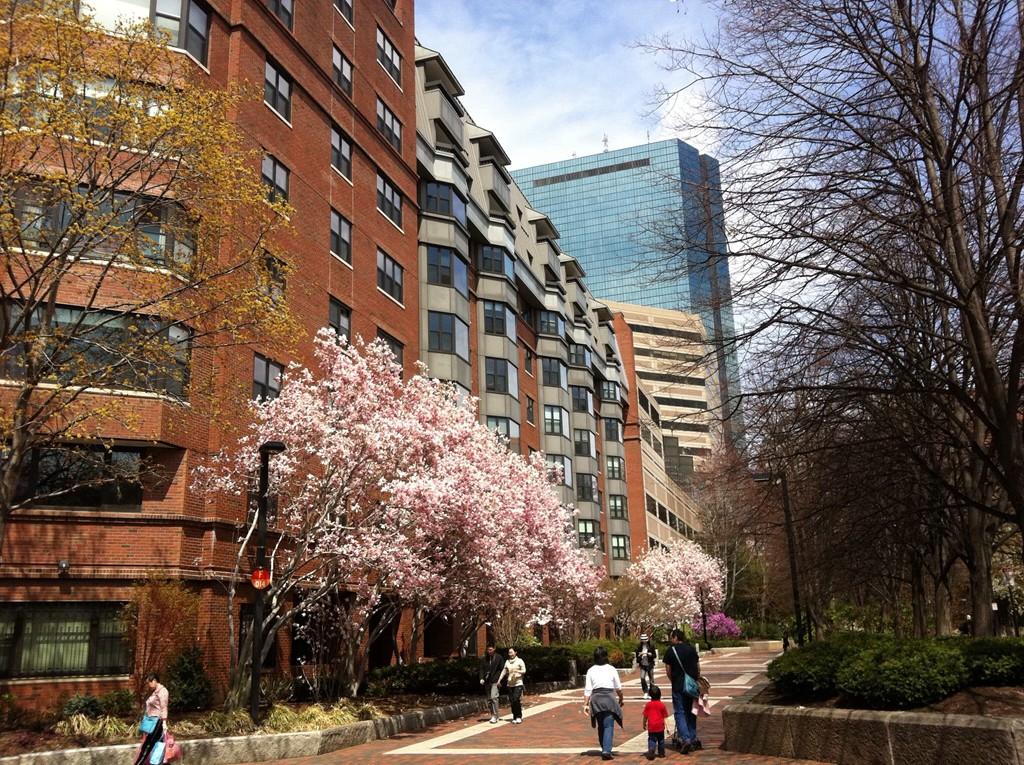 16 HARCOURT #8-I, BOSTON, MA 02116