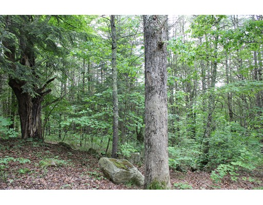 Lot 4D Healdville Road, Hubbardston, MA
