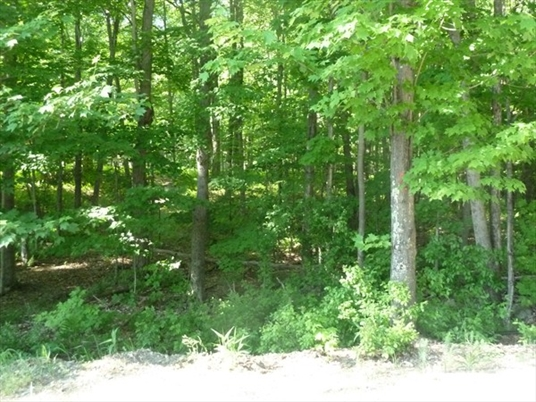Lot 1 West Gill Road, Gill, MA<br>$194,900.00<br>70.8 Acres, Bedrooms