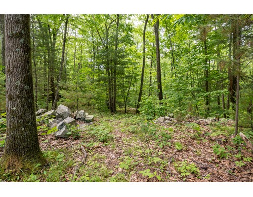 126 & 128 Forest Avenue (Lots 1 & 2), Cohasset, MA