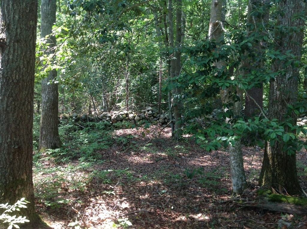 Large private wooded lot with field stone walls awaits the perfect space for your dream home. Lot has been perced and town approved.Please note sellers is willing to negotiate combining lot #1 & #2. Call for private showing!