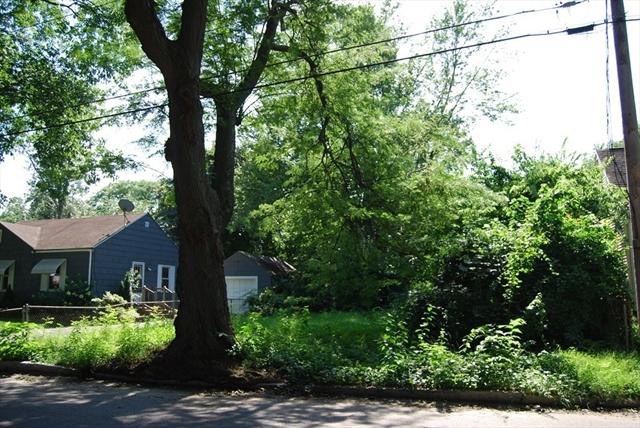 Georgetown St (Ws) L:231 Springfield MA 01104