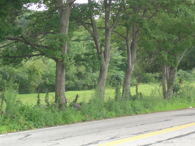 Lot 1 Old Westford Road, Chelmsford, MA, 01824, Chelmsford Home For Sale