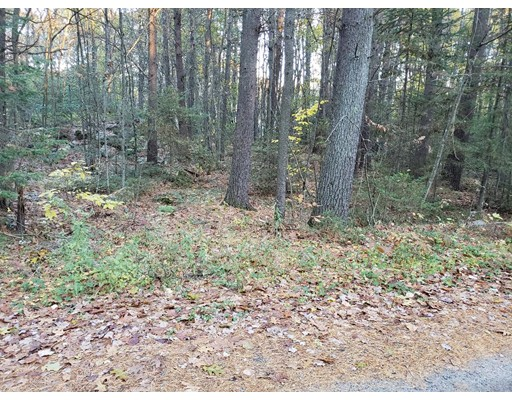 Lot57/58 Mistletoe Drive, Ashburnham, MA