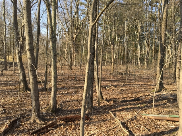 Lot - Winter Street, Wrentham, MA, 02093, Wrentham Home For Sale
