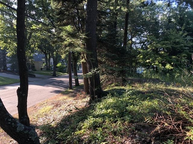 347 Woodland Rd, Brookline, MA, 02467, Brookline Home For Sale