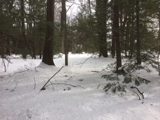 0 Summer St, Greenfield, MA: $39,900