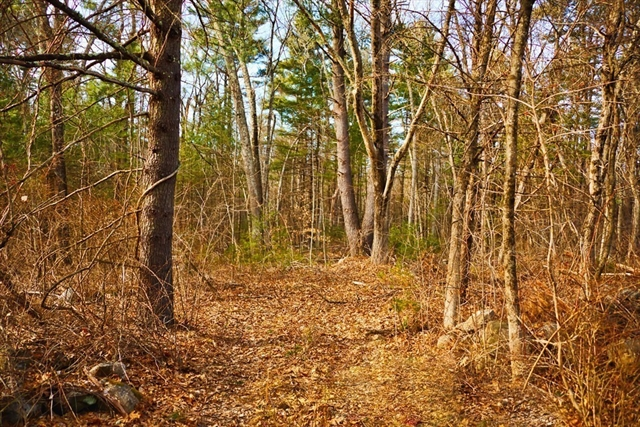 Lot 0 South Street, Carlisle, MA, 01741, Carlisle Home For Sale