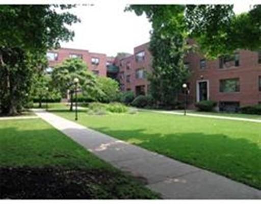 53 Harvard Avenue Brookline MA 02446